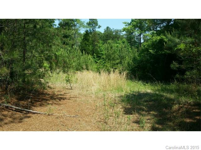 Lot 2 Lancaster Highway, Chester, SC 29706