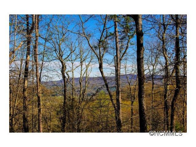 M79 Pine Mountain Trail M79, Brevard, NC 28712