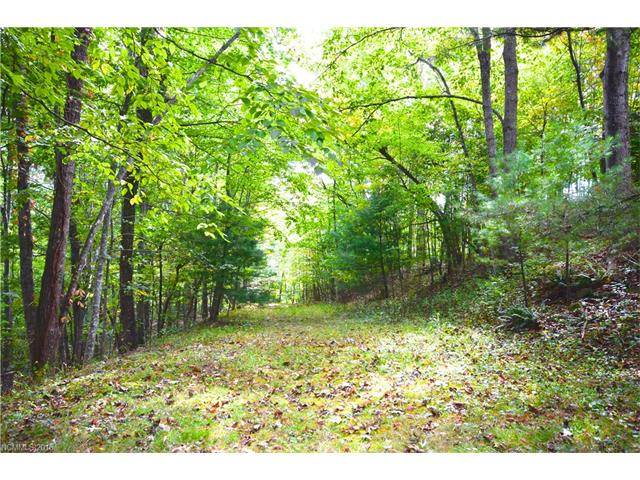 Build your mountain dream home on this lot that is located in a quiet, established neighborhood. Conveniently located in between Hendersonville and Brevard. Potential for mountain views with clearing and tree topping.
