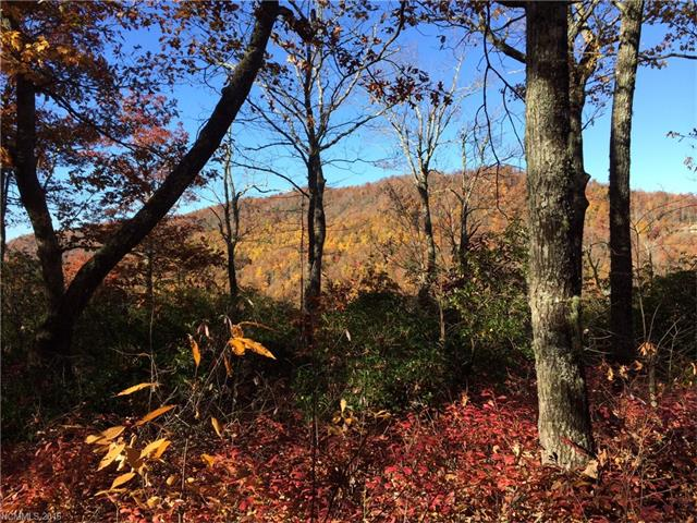 9 Laurel Knob Road Lot 9, Rosman, NC 28772