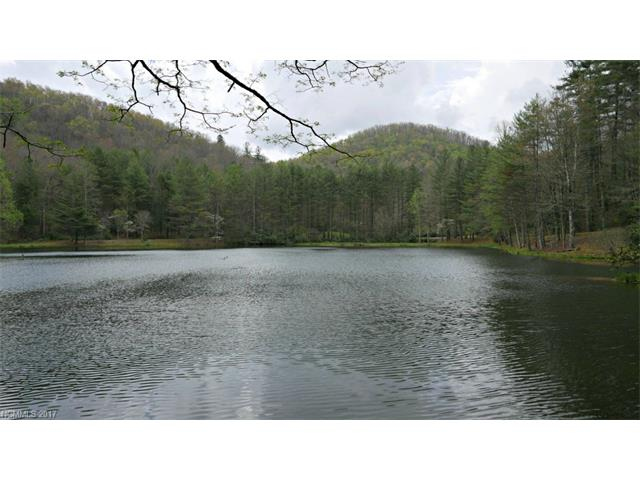 99 Rooster Cove Road, Brevard, NC 28712