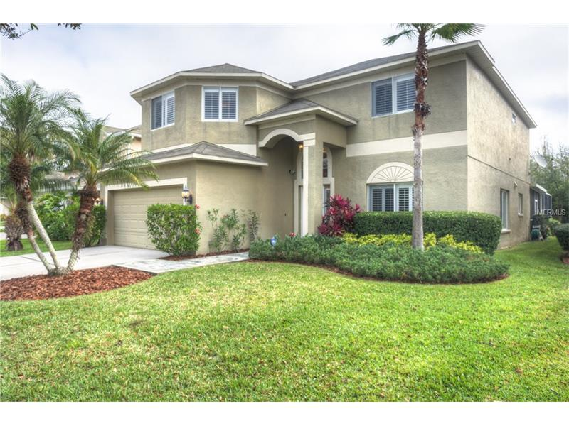 19323 SANDY SPRINGS CIRCLE, LUTZ, FL 33558