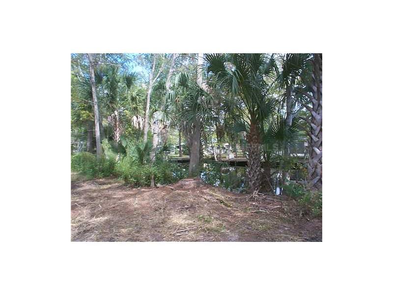CHERRY TREE ROAD, ASTOR, FL 32102