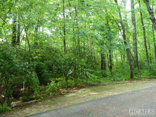 Lot 3 Country Club Estates Drive, Sapphire, NC 28774
