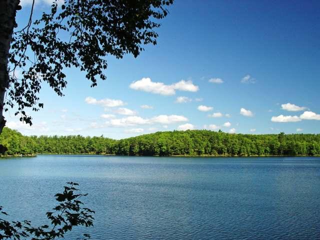 Lot 4 DOWNEY DR, Lake Tomahawk, WI 54539