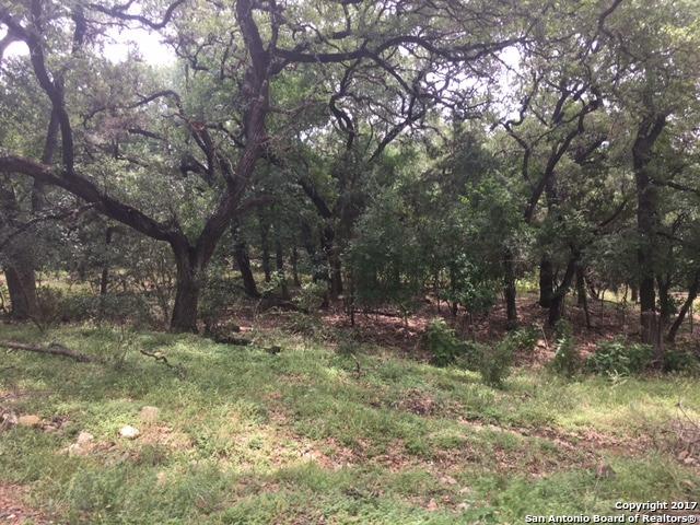 4226 Oak, San Marcos, TX 78666
