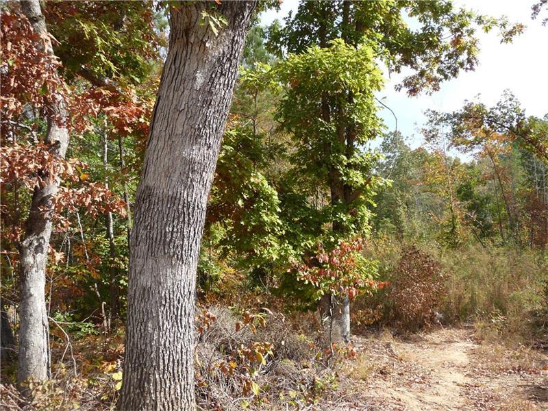 Old Villa Rica Road, Dallas, GA 30132