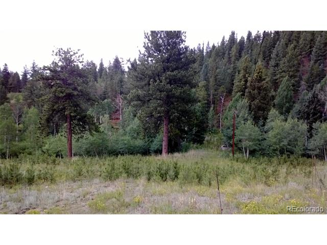 Great setting to build your dream home or builder spec home.  Two 1 acre vacant lots in Elk Creek Meadows with seasonal stream running through both lots.  Located on a paved road for easy access, property is level in the front and sloping in the back, professional concrete bridge already built over stream, there may be two usable leach fields on the property.  Lots of Pine and Aspen on both lots. Buyer and buyer's broker responsible for verifying all information. Broker owned, owner may perform a 1031 exchange at closing.
