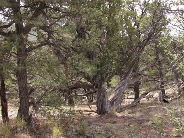 Milligan Ranch Lot 3, Gardner, CO 81040