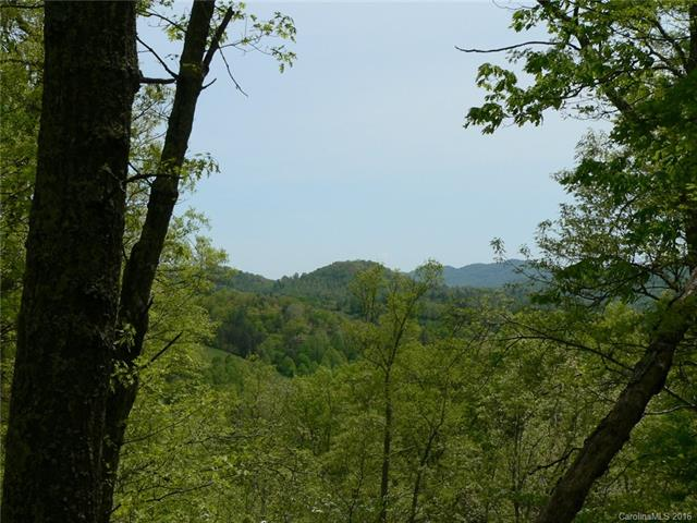 155 Turkey Trot Trail 17 Trailside, Marshall, NC 28753