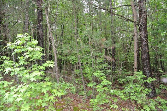 1 AC Lot Island View Road 5, Fort Mill, SC 29708