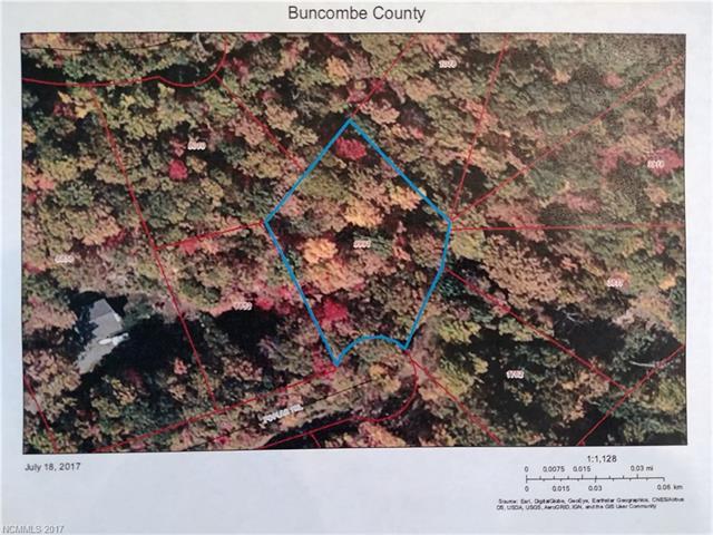 Poplar Trail 21, Barnardsville, NC 28709