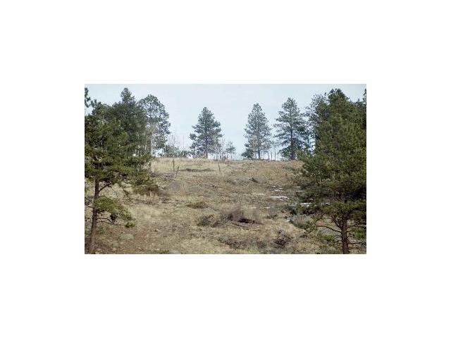 0 LOT 21 Lions Head Ranch, Pine, CO 80470