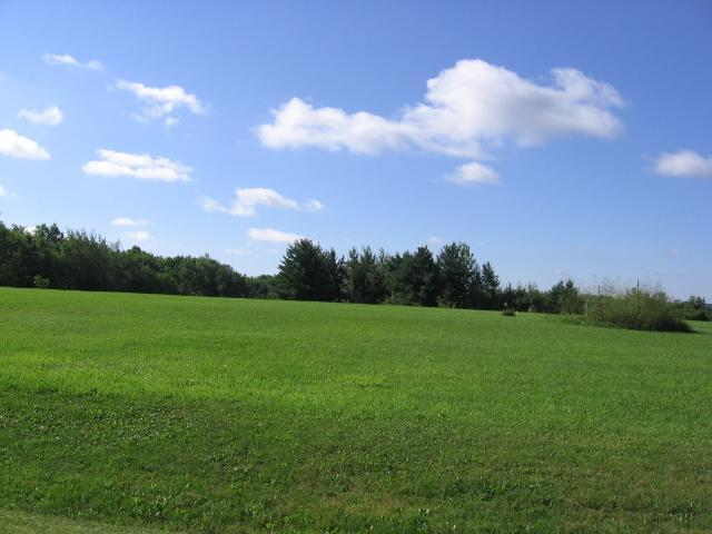 Lot 2 Doug Blegen, Spring Valley, WI 54767