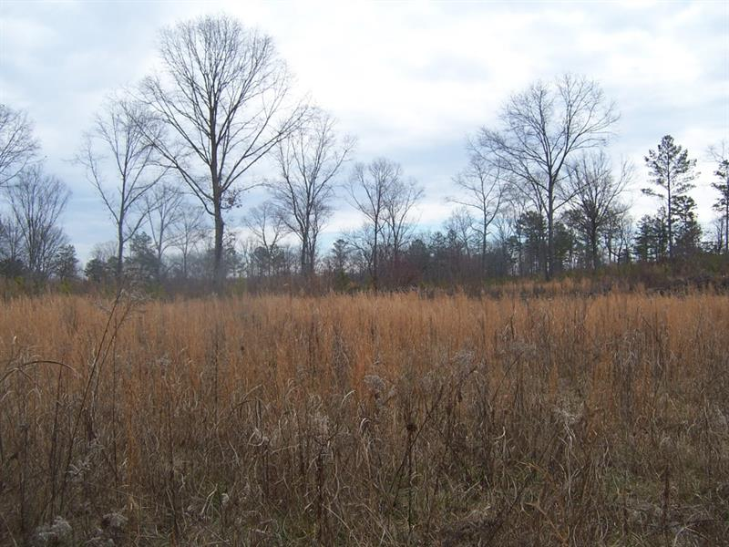 65 Iron Hill Road, Taylorsville, GA 30178