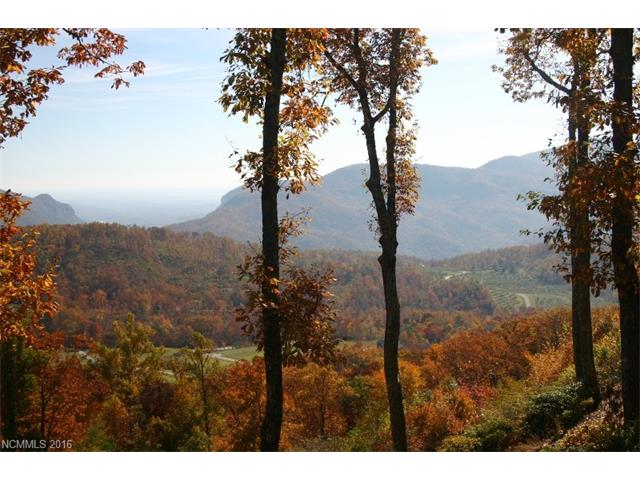 GRAND OAKS LOT 45.....BREATH TAKING VIEWS FROM THIS LOT ATOP GRAND OAKS. This view along with the peace and quite can be yours and just 15 minutes away from Hendersonville! Offered at $95,000