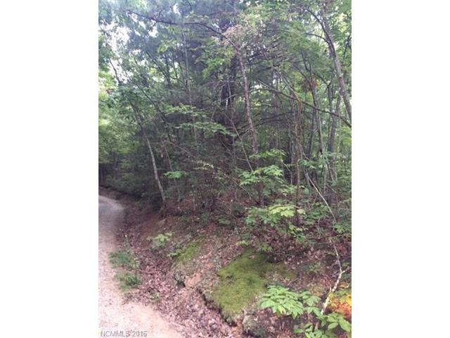 1111 High Top Mountain Road, Leicester, NC 28748