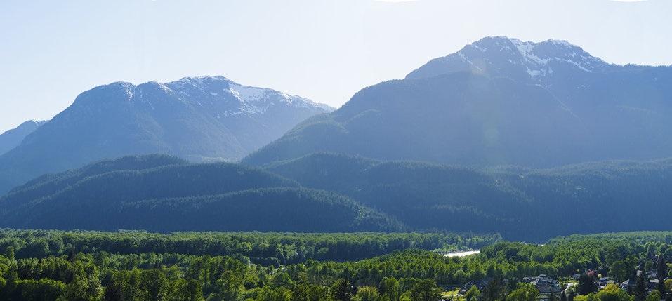41343 HORIZON DRIVE, Squamish, BC V0V 0V0