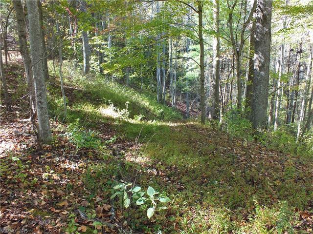 43 acres Roaring Fork / Meadow Fork Road, Hot Springs, NC 28743
