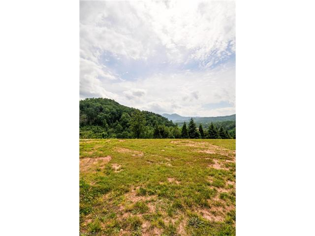 16 Rose Creek Road 71, Leicester, NC 28748
