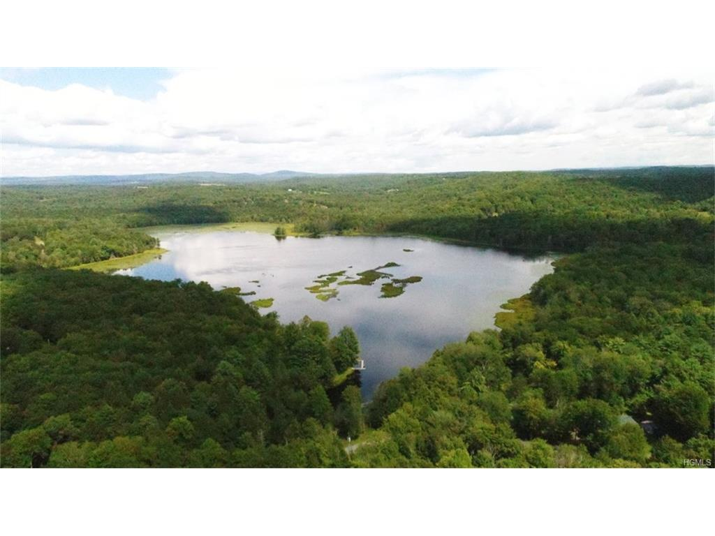 122 Jaketown Road, Swan Lake, NY 12783
