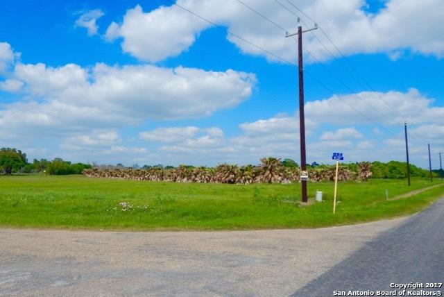 00 HERRING RD, Atascosa, TX 78002