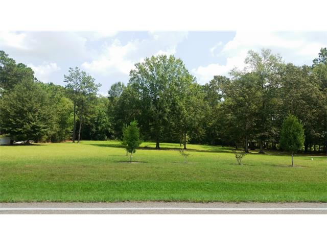 51060 HWY 1065 None, Independence, LA 70443