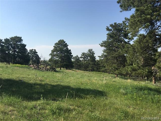 47412 Loblolly Pine Circle, Parker, CO 80138
