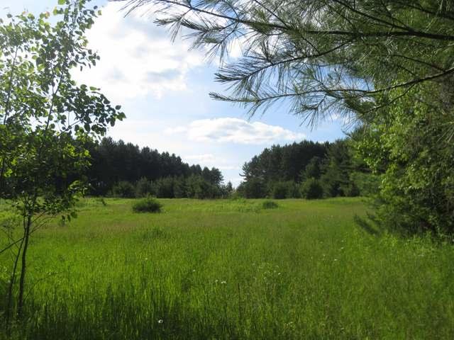 ON HWY 8, Rhinelander, WI 54501