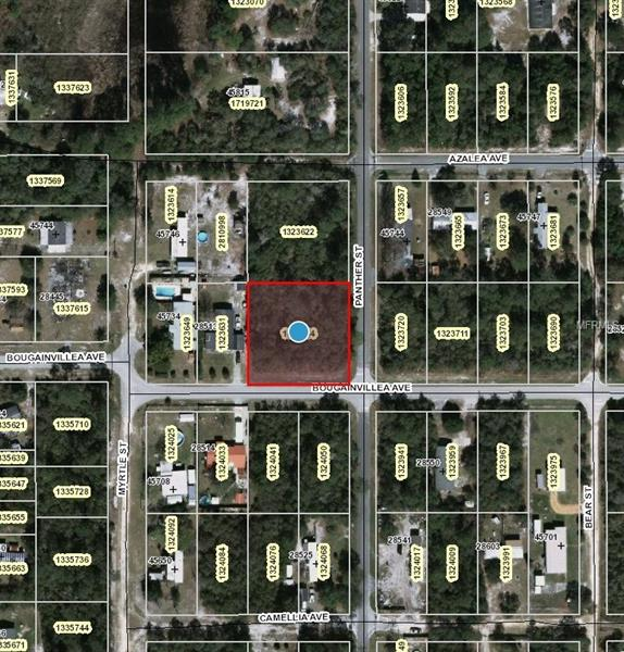 PANTHER STREET, PAISLEY, FL 32767