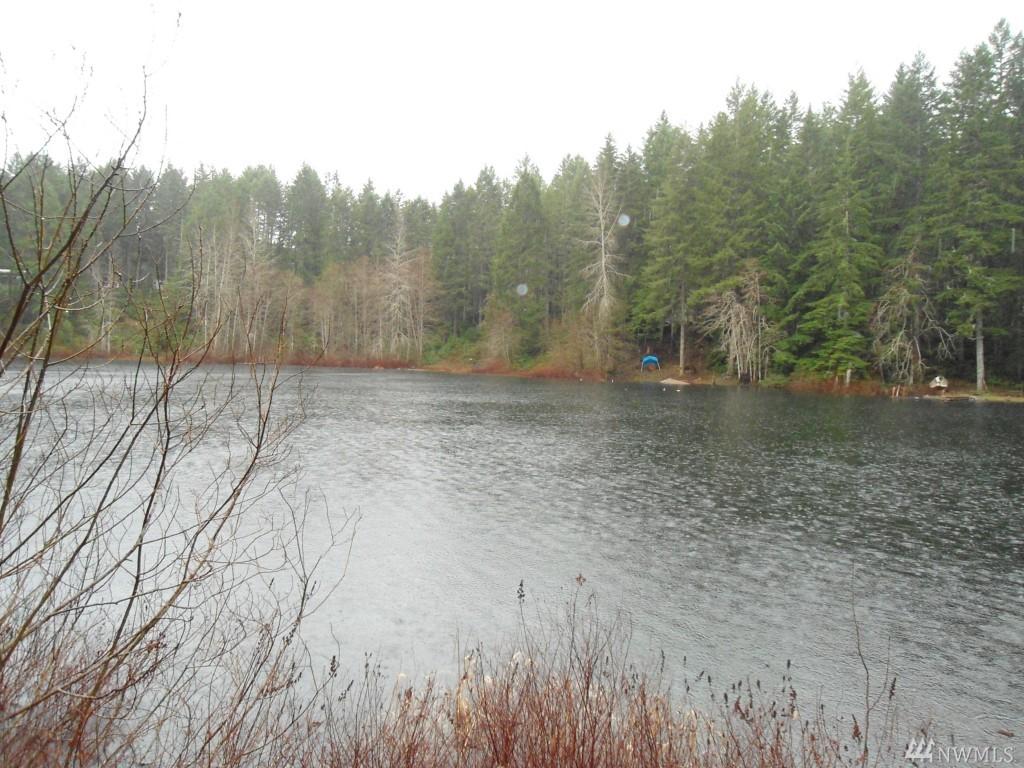 Collins Lake Dr, Belfair, WA 98588