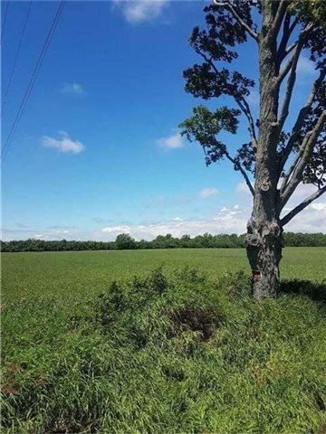 17511 Loyalist Pkwy, Prince Edward County, ON K0K 3L0