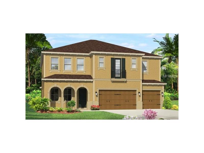 18116 LEAFMORE STREET, LUTZ, FL 33548