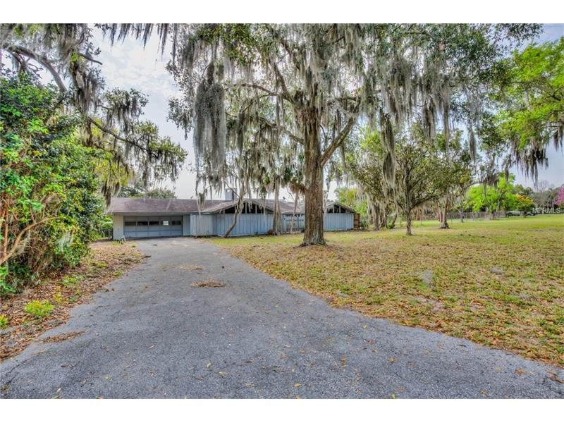 17500 E LAKE JEM ROAD, MOUNT DORA, FL 32757