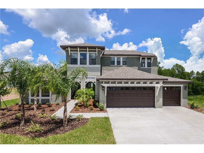 2566 LAKE MANOR DR DRIVE, LAND O LAKES, FL 34639