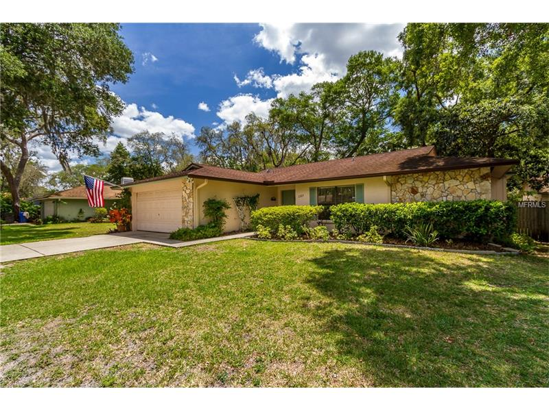 2303 WILLOW BRANCH AVENUE, LUTZ, FL 33549