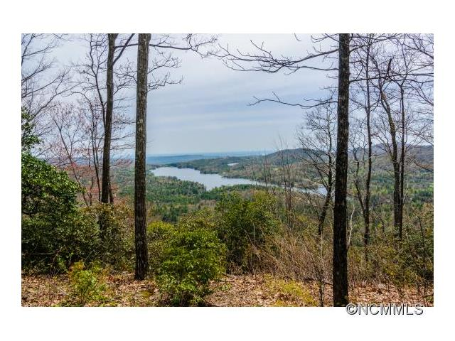 PS-8R Panther Summit Drive 8 R, Lake Toxaway, NC 28747