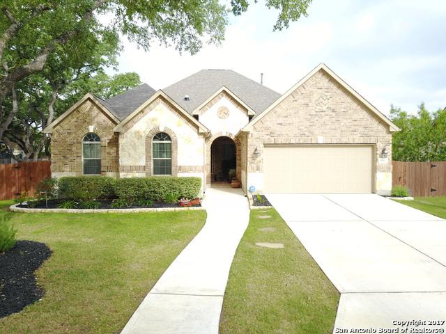 9507 Ninas Court, San Antonio, TX 78254