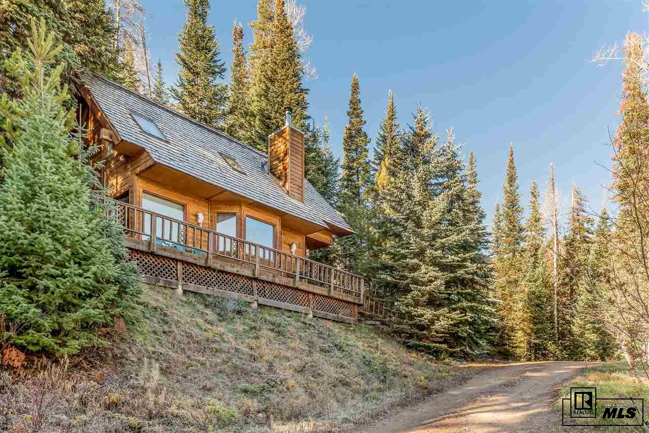 36875 Tree Haus Drive, Steamboat Springs, CO 80487