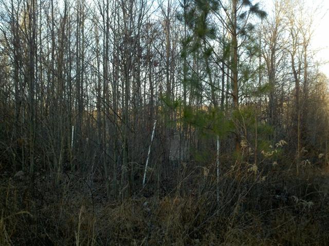 0 Rowe Gap Rd, Belvidere, TN 37306