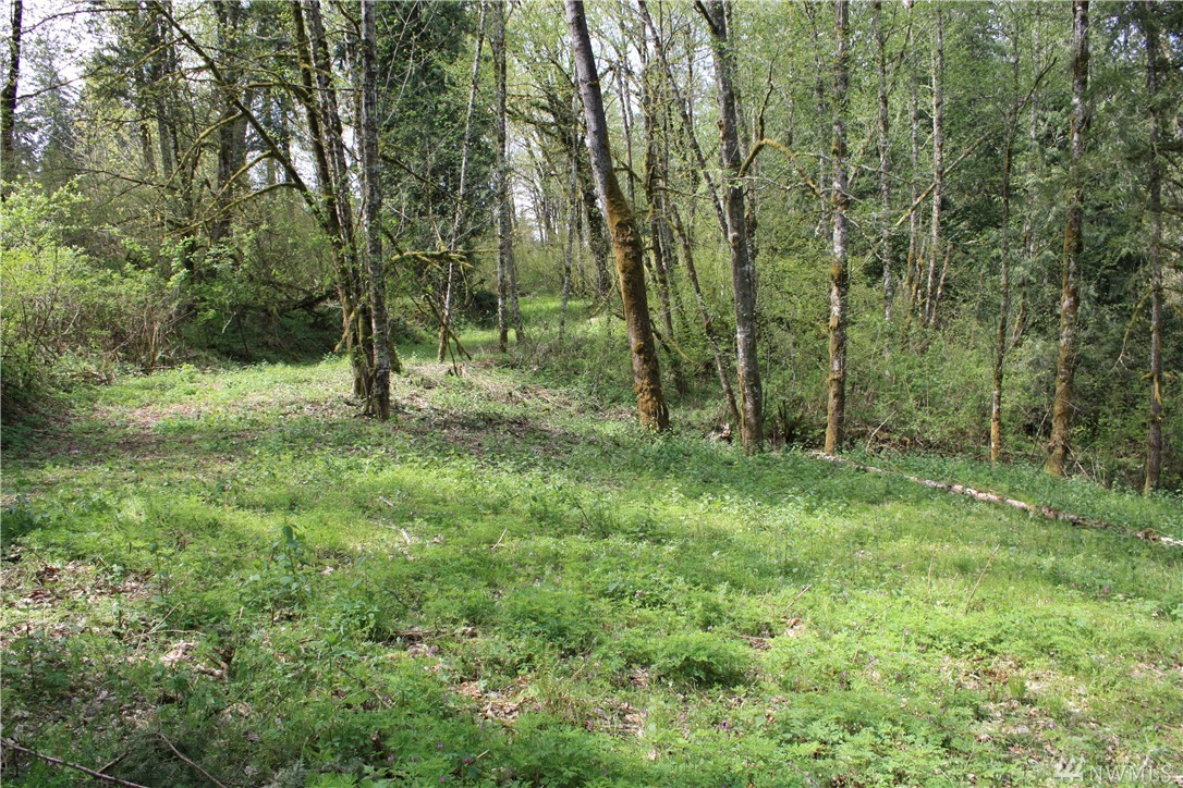 21128 SE Petrovitsky Rd, Maple Valley, WA 98038