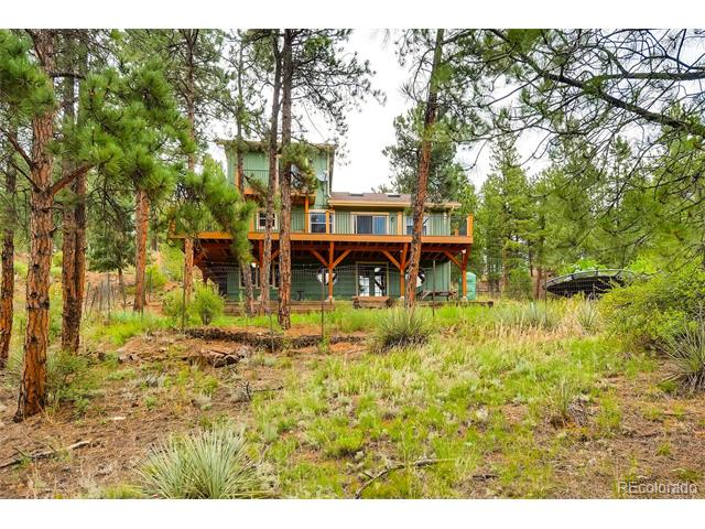 16626 Ouray Rd W, Pine, CO 80470