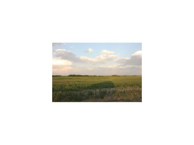 3.5 acres W:4  R:24  T:24  S:12 Q: Southwest, Rural Wheatland County, AB T1P 1J6