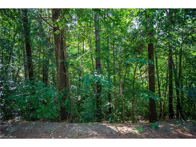 Build your dream home in this established subdivision North of town! Great, convenient location off of Beaverdam Rd. Access to shopping, restaurants, groceries, golfing, and lakes in minutes!