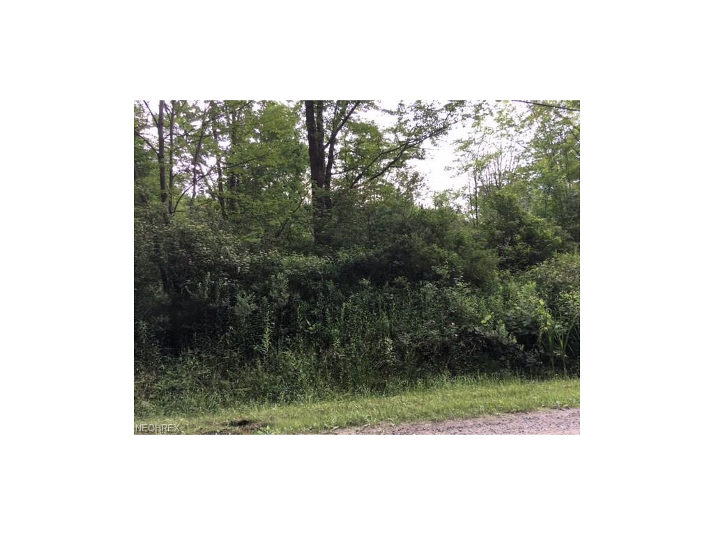 13445 Colony Ln, Burton, OH 44021