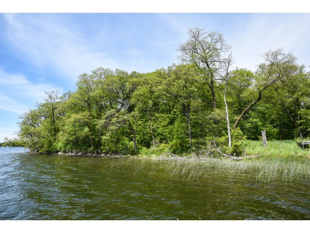 LOT 2 BLK 1 WOODHAVEN, Candor Twp, MN 56587