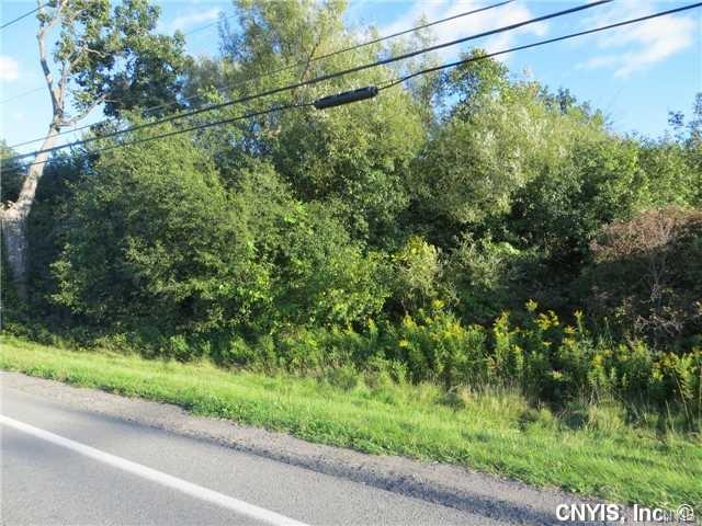 Lot #1 0 County Route 59, Brownville, NY 13634