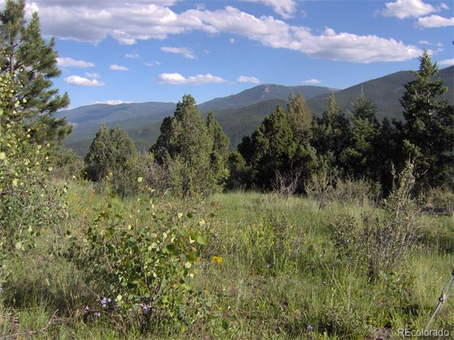 Breathtaking views of surrounding mountain ranges, rivers, valleys, and the town of Bailey. This almost 3 acre property offers southern exposure, privacy, with easy access to highway 285 and is located near the end of the road. Property is completely covered in wildflowers, various shrubs, juniper, spruce, and pine with scattered rock outcroppings. Electricity runs along the lot line of the property. There is a county approved septic site that has had a percolation test done in the past. Property was surveyed in 1993. Antenna on top of Bailey Mtn. good for cell service, and internet, and phone service available. This is a must see - you need to see it to believe it!