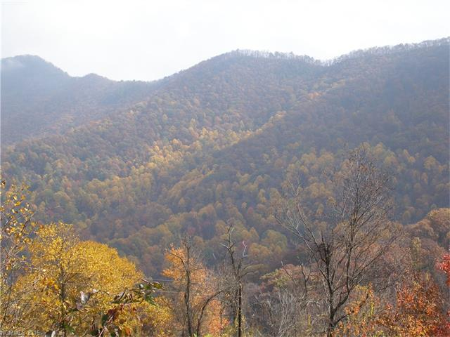 Lot 11 A Bear Wallow Trail, Leicester, NC 28748