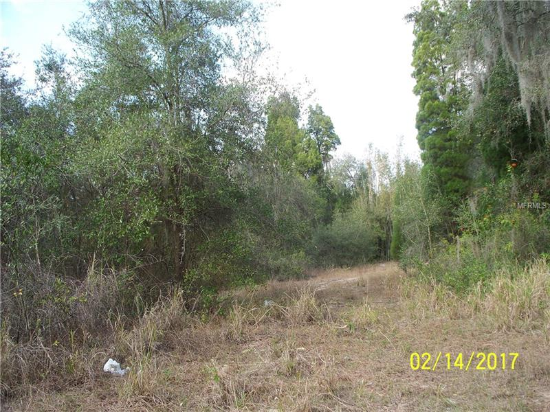 SCENIC HIGHWAY, BABSON PARK, FL 33827